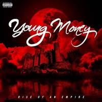 various artists: young money: rise of an empire